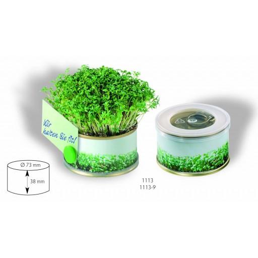 Mini Garten Kresse ohne Magnet