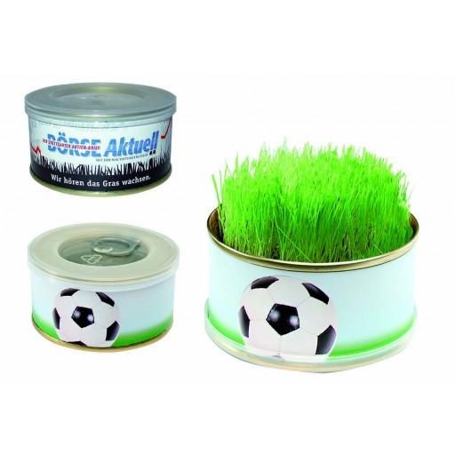 Mini Garten Fußball