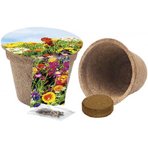 Kokos-Pflanztopf, bunte Blumenmischung
