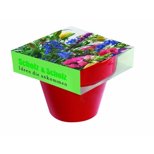 Tontopf Colour Bunte Blumenwelt