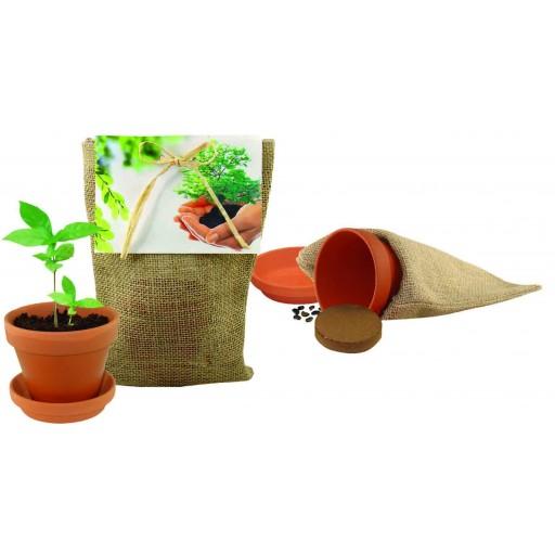 Pflanze Deinen Baum kleines Natur-Säckchen, Robinie