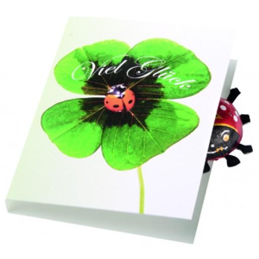 Klappkärtchen Glückskäfer