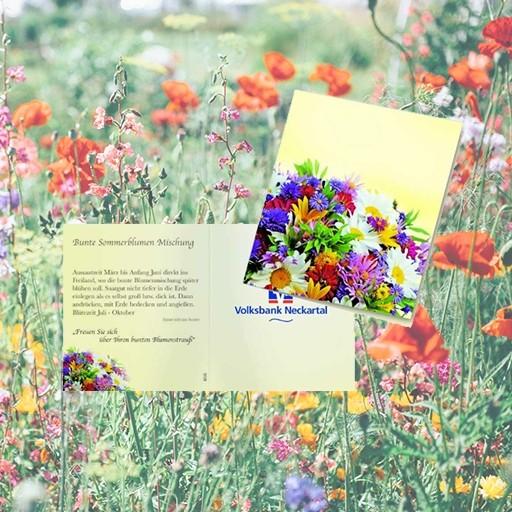 Samen-Klappkärtchen Bunte Blumenwelt