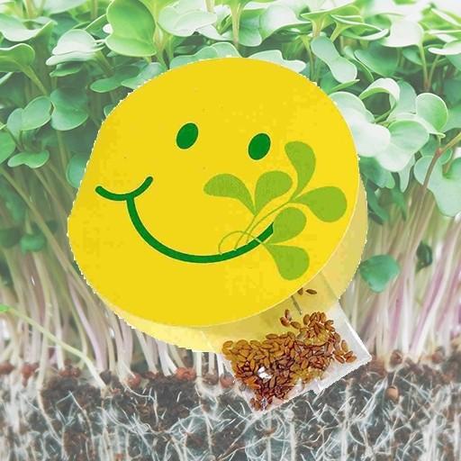 Samen-Klappkärtchen Smiley fit , Kresse