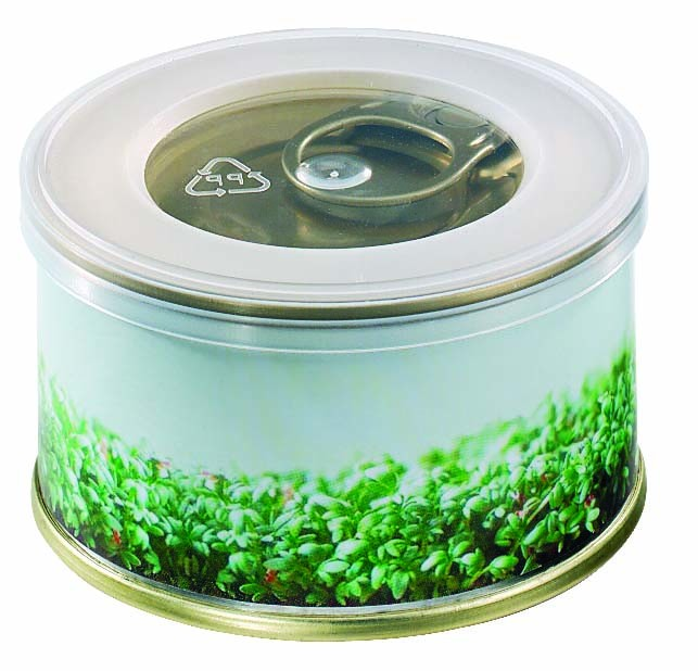 Mini Garten Kresse Mit Magnet