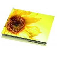 Samen-Klappkärtchen Sonne, 90 x 60 mm