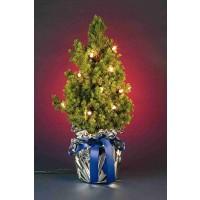 Lichterbaum mit Lichterkette