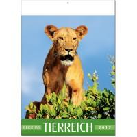 """Kalender """"Blick ins Tierreich"""""""