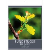 "Kalender ""Fundstücke der Natur"""