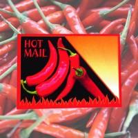 Samentütchen Chili
