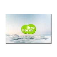 Display-Cleaner Werbeartikel  mit Logo bedrucken lassen : Display-Cleaner Sonderform | PU