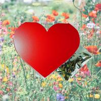 Klappkärtchen Herz