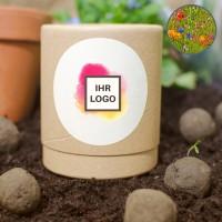 10 Seedbombs in Stülp-Logodose | Blühende Landschaft