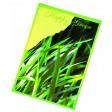 Samentütchen 82x114 mm, Happy Green, Sportrasen