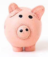 ein rosa Glücksschwein
