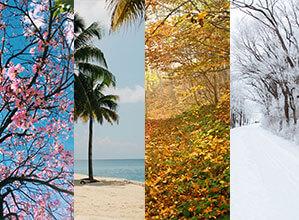 Vier Jahreszeiten, Fühling, Sommer, Herbst und Winter
