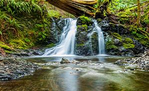 Nachhaltige Werbeartikel, Wasserfall im Wald fließt in einen kleinen Bach