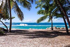 Strand mit Palmen und türkis Farbendes Wasser