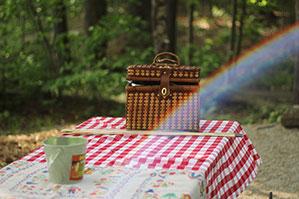 Picknickdecke mit Picknickkorb ausgebreitet