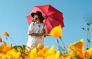 Roter Schirm in gelbem Blumenfeld