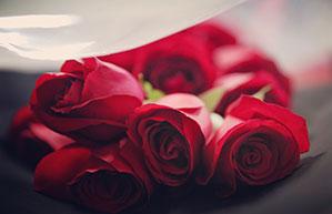 Einen Straus Rosen zum Valentinstag verschenken