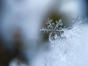 Schneeflocke gefroren