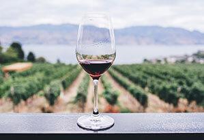 Weinglas mit Rotwein, im Hintergrund Weinberge