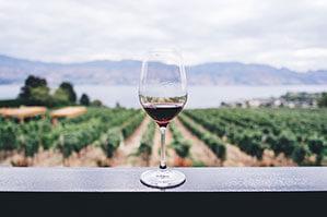 Weinglas im Hintergrund Weinberge und Meer