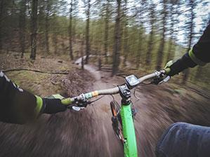Lenker von Mountainbike das durch den Wald fährt