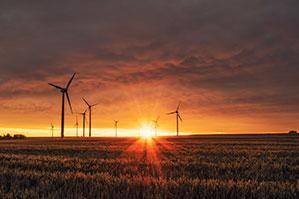 Windpark und Felder im Sonnenuntergang